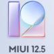 Смартфони Xiaomi, які вже отримали MIUI 12.5